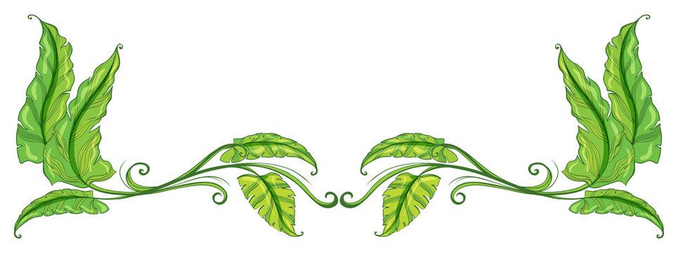 A green leafy border