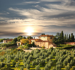 Fototapete - Luxury villa in Tuscany, famous vineyard in Italy