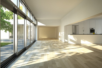 Contemporary minimal house interior with kitchen garden view