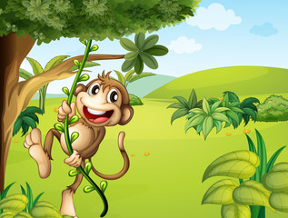 A hanging monkey and a beautiful nature