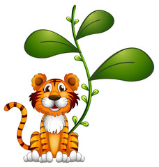 A tiger beside a vine