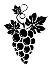 Fototapeta Black silhouette of grapes. Vector illustration. obraz