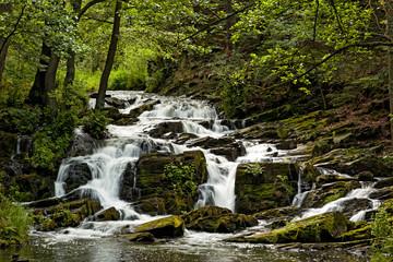 Selketal Harz Selkewasserfall im Sommer