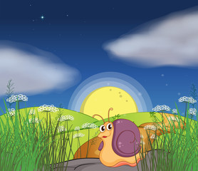 A snail in the hills