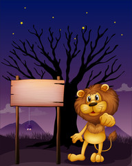 A lion and the wooden signboard in a dark neighborhood