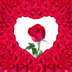 beautiful red rose in heart of red rose useful for some Valentin
