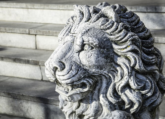 old lion statue