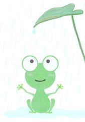雨 カエル