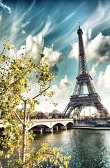 Fototapete - Beautiful colors and vegetation near Eiffel Tower and Seine rive