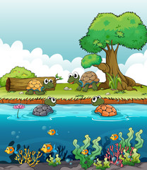 Poster Submarine A river and a smiling turtles