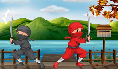 Two ninjas