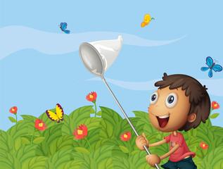 A butterfly catcher in the garden