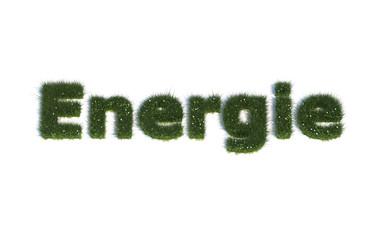 """Energie: Serie """"Schriften aus realist. Gras"""" Sprache DE"""