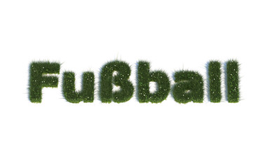 "Fußball: Serie ""Schriften aus realist. Gras"" Sprache DE"