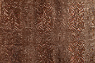 Dark brown snakeskin texture