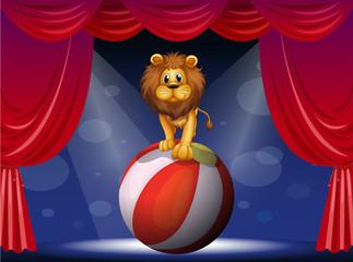 Keuken foto achterwand Beren A lion above a hot air balloon