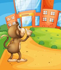 A monkey wondering in front of the school