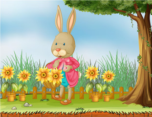 A bunny in the garden with sunflowers