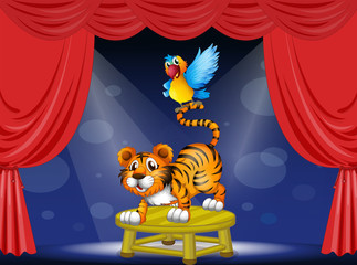A tiger and a colorful parrot performing on the stage