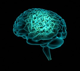 Cerebro pensando