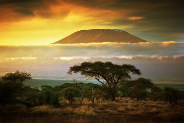 Photo sur cadre textile Ikea Mount Kilimanjaro. Savanna in Amboseli, Kenya