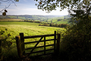 Gate onto Rolling British Countryside Wall mural