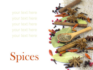 A variety of spices  isolated