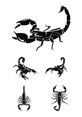 scorpion Collection Set