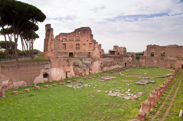 Fototapete - Palatine stadium ruins side view in palatine hill at Rome