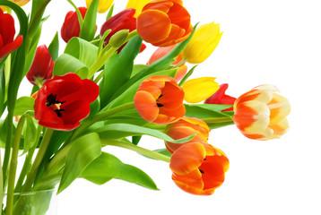 Obraz Wspaniały kolorowy tulipanowy bukiet - fototapety do salonu