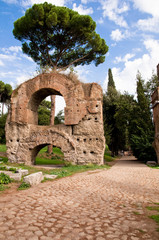 Fototapete - Ruins from Acquedotto Claudio and stone street in Palatine Hill