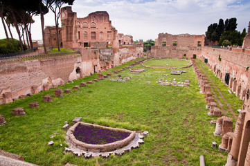 Fototapete - Palatine stadium ruins in palatine hill at Rome