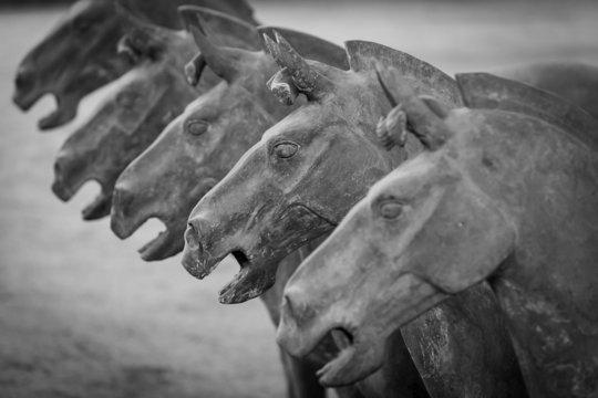 Terracotta horses in Xian China