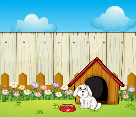 Stores photo Chiens A dog and the dog house inside the fence
