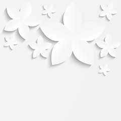 White paper floral background