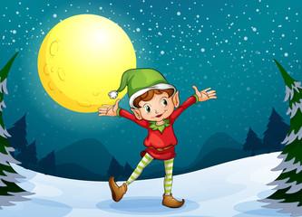 A male elf