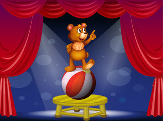 A bear at the circus show