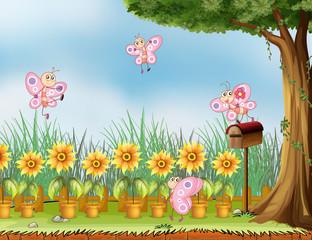 Keuken foto achterwand Vlinders Four pink butterflies at the garden