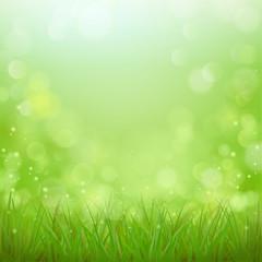 Wiese - Frühlingsstimmung