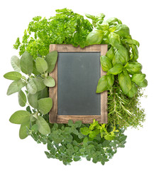 blank blackboard with variety fresh herbs