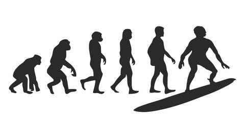 Vom Affen zum Surfer (Menschen)
