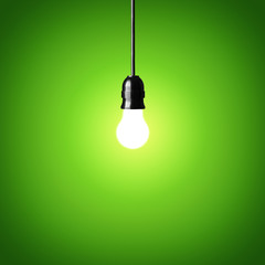 Bulb on green background.Idea concept.