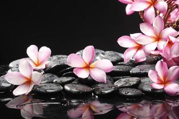 Set of frangipani with zen stones
