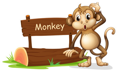 A monkey beside a sign board