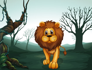 A lion in a scary forest