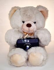 teddybaer with camera
