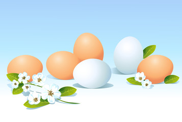 eggs and spring flowers on blue background