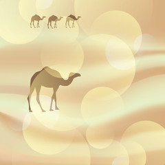 Vector camel in the desert