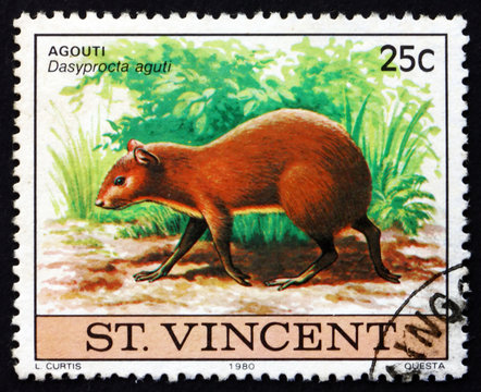 Postage stamp Nicaragua 1980 Agouti, Dasyprocta Aguti, Animal