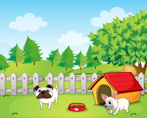 Garden Poster Dogs Two bulldogs